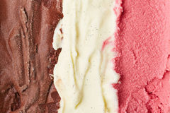 Neapolitan ice cream. With chocolate and vanilla and strawberry ice cream Royalty Free Stock Photography