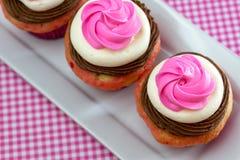 Neapolitan muffin Arkivfoto