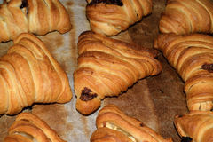 Neapolitan Sfogliatelle. Stuffed with ricotta cheese and chocolate cream Royalty Free Stock Images