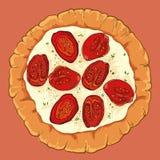 Neapolitanische Pizza des Vektors mit Tomate und Basilikum stock abbildung