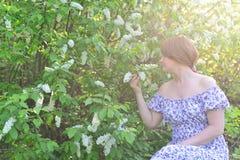 Near blomstra hägg för vuxen kvinna i parkera Royaltyfria Bilder