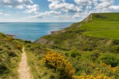 Near Chapman`s Pool, Jurassic Coast, Dorset, UK. South West Coast Path near Chapman`s Pool, near Worth Matravers, Jurassic Coast, Dorset, UK Stock Image