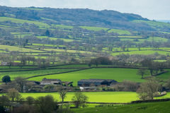NEAR CHARD, SOMERSET/UK - MARCH 22 : Scenic View of the Undulati. Ng Countryside of Somerset on March 22, 2017 stock photos
