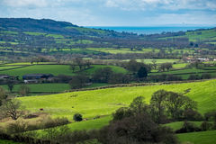 NEAR CHARD, SOMERSET/UK - MARCH 22 : Scenic View of the Undulati. Ng Countryside of Somerset on March 22, 2017 Stock Photography