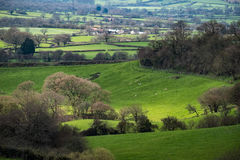 NEAR CHARD, SOMERSET/UK - MARCH 22 : Scenic View of the Undulati. Ng Countryside of Somerset on March 22, 2017 royalty free stock images