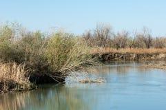 Near desert.  desert.  steppe. river Stock Photos