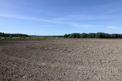 The near edge of a cultivated field on a spring day.  royalty free stock photo