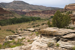 Near Fruita, Colorado Royalty Free Stock Photos