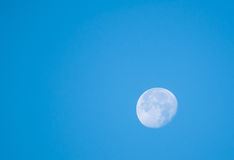 The near full moon on blue sky background in day light Stock Image