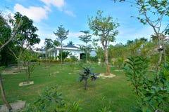 Near hus för organiskt trädgårds- fruktträd Royaltyfri Fotografi