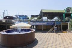 Near ingång för springbrunn till `en för strand`-delfin i semesterortstaden av Adler, Sochi Royaltyfri Bild