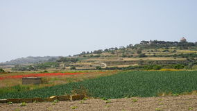 Near Mdina, Malta. View around Mdina city, Malta Stock Images