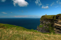 Near the ocean - Cliffs & nature at the coast of Ireland Stock Photography