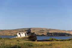Near punkt Reyes för skeppsbrott Arkivbild