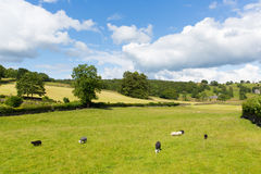 Near Sawrey country view by Hawkshead Lake District former home to Beatrix Potter. Near Sawrey village country view by Hawkshead Lake District Cumbria former Royalty Free Stock Images