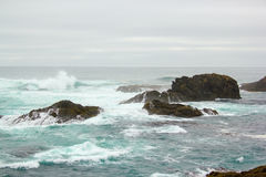 Near shore reef at Mendocino Headlands State Park. Royalty Free Stock Photos