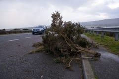 Storm Deirdre tears through Northern Scotland stock photography
