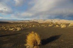 Near Ubehebe Crater, Death Valley, California. Desert and mountains under threatening skies near Ubehebe Crater, Death Valley, California Stock Images