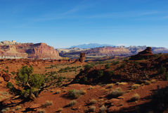 Near Waterpocket Fold, Utah. Scenery near Waterpocket Fold, Utah Royalty Free Stock Photo