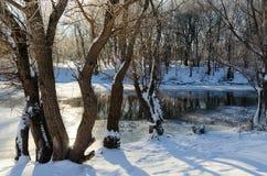 Near winter rivulet Stock Image