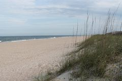 Nearly deserted beach with sea oats stock images