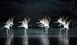 The neat in formation of ballet-ballet Swan Lake Stock Image