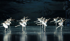 The neat in formation of ballet-ballet Swan Lake Royalty Free Stock Image
