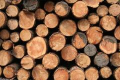 Neat log pile Stock Photo