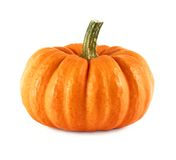 Neat pumpkin on white. Studio shot of a nice ornamental pumpkin on pure white background Royalty Free Stock Images