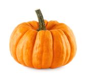 Neat pumpkin on white Stock Image