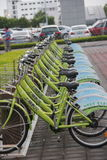 Neat rows of bicycles in SHENZHEN Royalty Free Stock Images