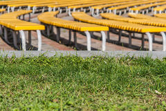 Neat rows of green benches on a grass background Royalty Free Stock Image