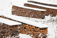 Renewable heat source firewood stacked in winter Stock Photo