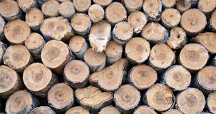 Neatly Stacked Firewood Royalty Free Stock Photo