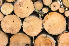 Firewood. Neatly stacked firewood creates intersting pattern Stock Photo