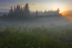 Nebbia. fotografie stock