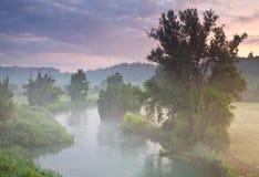 Nebbia Stock Foto's