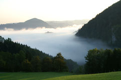 Nebbia Immagini Stock