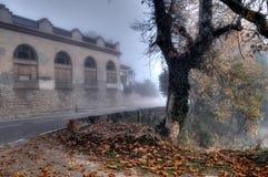 nebbia Fotografie Stock