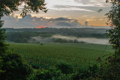 Nebbia ad alba fotografia stock libera da diritti