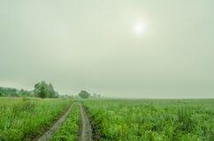 Nebbia alle prime luci Fotografia Stock Libera da Diritti
