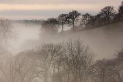 Nebbia in aumento Immagine Stock