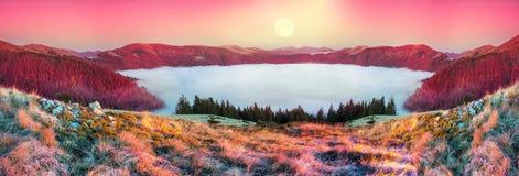 Nebbia in autunno Fotografia Stock Libera da Diritti
