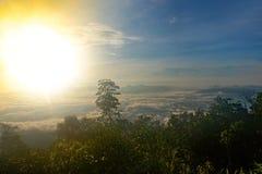Nebbia bella Immagine Stock