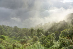 Nebbia che copre le colline di nagarkot Fotografia Stock