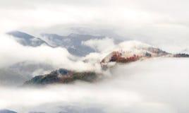 Nebbia del mare dopo pioggia Fotografia Stock
