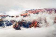 Nebbia del mare dopo pioggia Fotografia Stock Libera da Diritti
