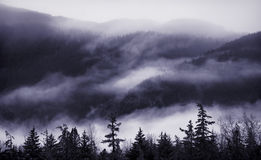 Nebbia della montagna Immagini Stock Libere da Diritti