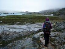 Nebbia della traccia di Chilkoot Fotografia Stock