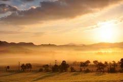 Nebbia di autunno Fotografia Stock Libera da Diritti